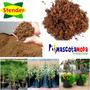 Turba Importada Para Jardinería Sustrato Especial 5kg
