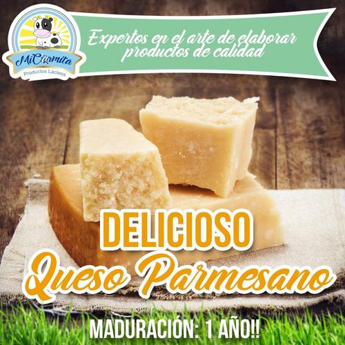 Queso Parmesano 1 Año - Domicilio Quito- Envió Provincias