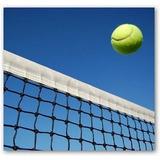 Red De Tenis Importada