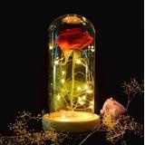 Rosa Eterna Flor Preservada Con Luces Led Docorativa Regalo