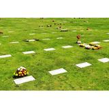 Lote Doble (cementerio)