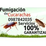 Fumigación De Plagas Garantizada Cucarachas Ratas Pulgas Etc