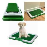 Pack 3 Baño Ecologico Para Mascotas Perros Puppy Potty Pad