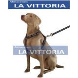 Pechera Con Correa Militar Super Resistente Perros Grandes