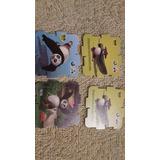 Mcdougal Cards Y Otros