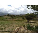 Hermosos Terrenos (chaquibamba-guayllabamba) Últimos 2 Lotes