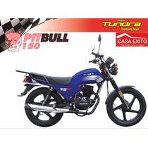 Moto Tundra Modelo Pitbull 250