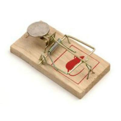 Trampa para ratones grande u s 1 00 en mercado libre - Cebos para ratones ...